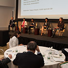 Panel: Standards, reporting and risk