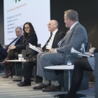 Panel: Green bond risks